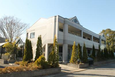 Palatino 1921(東茨城郡大洗町)